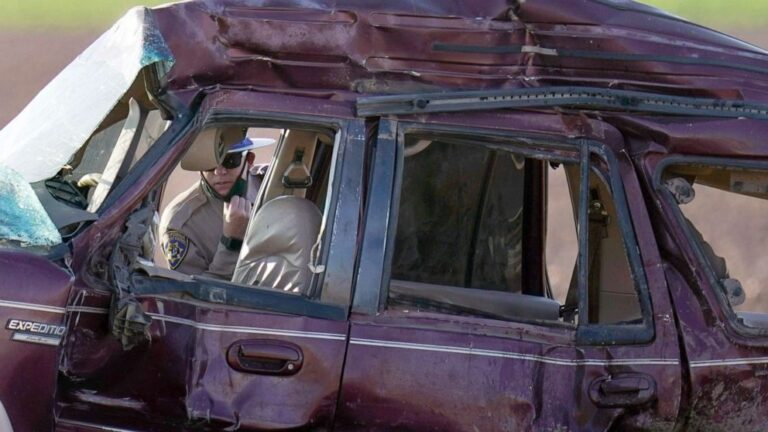 13 killed in California crash allegedly breached Mexico fence, entered US illegally