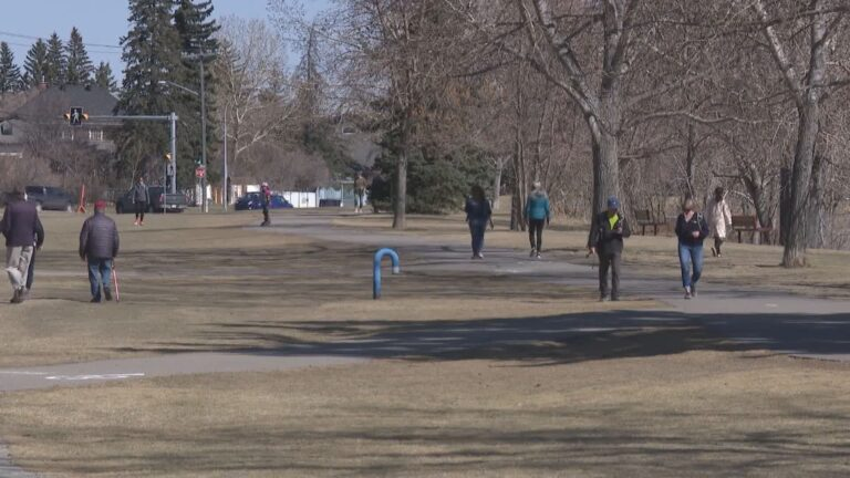 Calgary police investigating after seeds covered in poison found on pathway